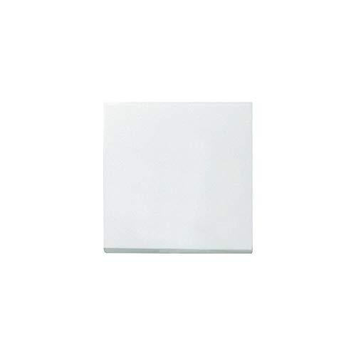 Gira Wippe 029603 Wechsel System 55 reinweiss, Weiß -