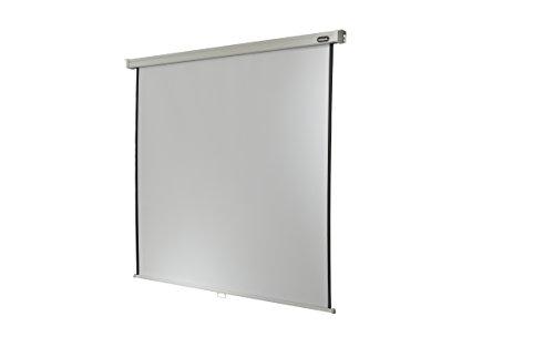 Celexon Rollo-Leinwand Professional | Format 1:1 | Nutzfläche 180 x 180 cm | Beamer-Leinwand geeignet für jeglichen Projektortyp | Auch als Full-HD und 3D-Leinwand einsetzbar | einfache Installation & gute Planlage