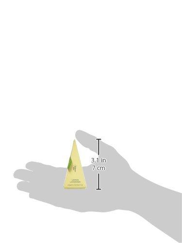 Tea Forte Lotus Presentation Box LOTUS Mit 10 Bio Tee-pyramiden – Schwarztee, Oolong Tee, Grüntee, Weißer Tee und Kräutertee by Tea Forté