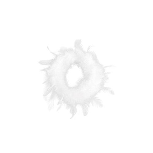 Dekokranz FEDER - weiß - Federkranz - Türkranz - Nest - Osterkranz - Kranz (10 cm)