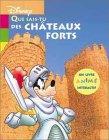 Que sais-tu des châteaux-forts ?