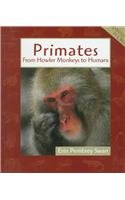 Primates Animals In Order