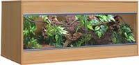 Vivexotic EX55 Reptile Vivarium: Ellmau Beech from Vivexotic