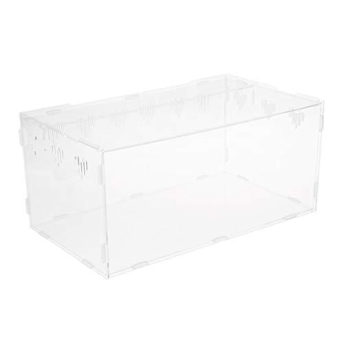 Homyl Acryl Terrarium Fütterungsbox Für Reptilien Schlange Eidechse Frosch - M