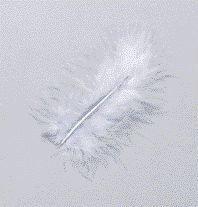Feder Marabu 10cm wasserblau