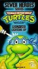 Teenage Mutant Ninja Turtle Leonardo - Teenage Mutant Ninja Turtles: Leonardo Lightens