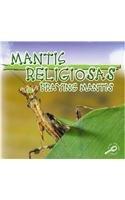 Mantis Religiosas: Praying Mantises (Biblioteca Del Descubrimiento De Los Insectos/insects Discovery Library) por Jason Cooper