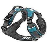 Embark Active Hundegeschirr, Größe verstellbar und ohne Choke (Medium (61 - 79 cm, Teal Blau)