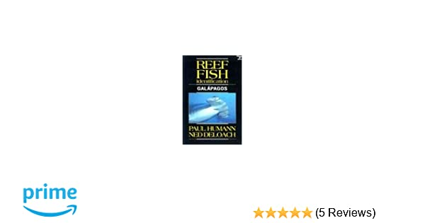 Reef Fish Identification Gal/ápagos Galapagos