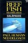 Reef Fish Identification: Galapagos -
