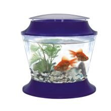 PET-228259 Fish 'R' Fun Plastic Bowl & Lid (17ltr)
