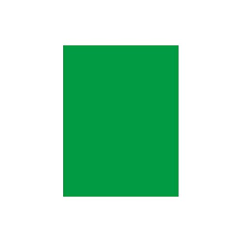 Bresser F001385 Papierhintergrundrolle (1,4 x 11 m) chromakey grün