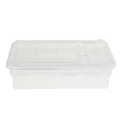 B Blesiya 24 Eier Inkubator Brutkasten Zuchtbox für Vögel/Tauben/Wachteln/Reptilien