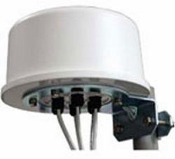 Zebra ml-2452-hpa6X 6–036Klasse N 6dBi Omni-Directional Antenna–Antennen (6dBi, 2.4–2.5/4.9–5.875, IEEE 802.11a, IEEE 802.11b, IEEE 802.11g, IEEE 802.11N, 360°, 45°, 360°)