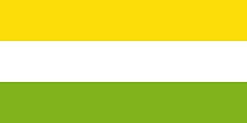 magflags-bandera-large-municipio-de-san-pedro-sucre-escogida-a-traves-de-concurso-organizado-por-el-