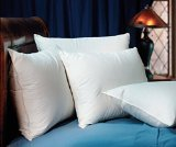 pacific-coast-down-surround-standard-pillow-set-featured-in-many-marriott-hotels-2-standard-pillows