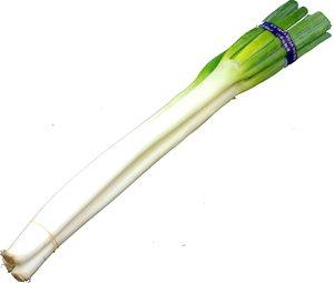 九州産 白ねぎ(シロネギ・白葱・長ネギ) 2~3本 九州の安心・安全な野菜! 【大分産・九州】