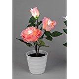Formano Rose im Topf rosa Kunstblume Blume Kunststrose leuchtend mit LED Läppchen Deko 669148