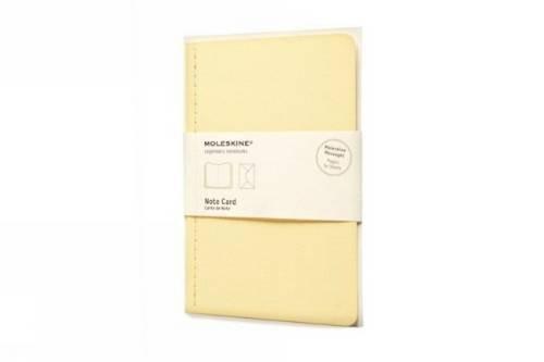 Moleskine Nachrichten Notizkarte Pocket, Kartoneinband frangipani-gelb (Card Note Pocket)