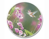 Absorbastone Absorbant Car Auto Cup Holder Coaster Hummingbird Pretty in Pink Hummingbird Coaster