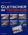 Gletscher im Treibhaus: Fotografischer Bestandsvergleich der Alpengletscher der letzten hundert Jahre - Wolfgang Zängl