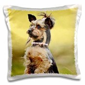 RinaPiro - Dogs - Yorkie. Puppy. Doggy. Pink bow and necklace. - 16x16 inch Pillow Case