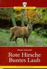 Rote Hirsche, buntes Laub