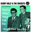 Holly In The Hills + The Buddy Holly Story, Vol. 2vol. 3 - Tnt Vol. 3
