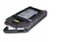 HPE Ersatzteil 72GB HDD 10000rpm SCSI U320 HotPl non new Option 286714-B22 (S)