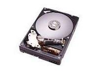 IBM 250GB Simple-SWAP SATA HDD Bulk, 73P8006-RFB (Bulk) -