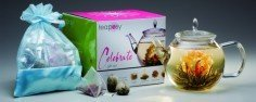Teeblumen-Geschenkset