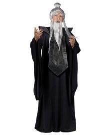 Sensei Master Kostüm Herren (Sensei Kostüm für Herren)