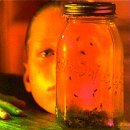 Jar of Flies by Alice in Chains (1995-10-03)