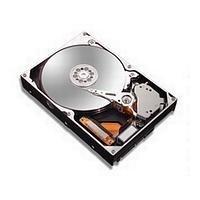 Maxtor 6L250R0 DiamondMax 10 RoHS Festplatte 250.0 GB 9.0 ms U - ATA / 133 16.0 MB -