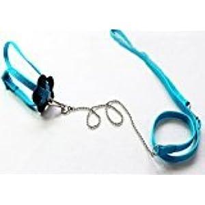 zantec Generic verstellbar Reptile Eidechse Harness Leine verstellbaren Multicolor Light Soft Fashion (blau)