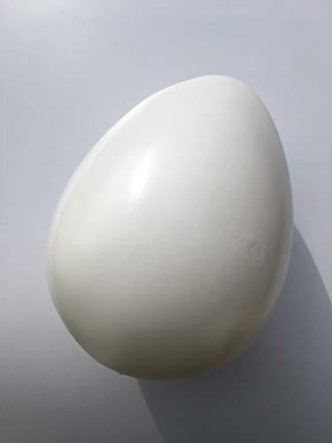 Erro dino ei hohlattrappe - 16565 - xxl uova finte per decorazione pasquale, grande pasqua, riproduzione in plastica, dinoei attrappe