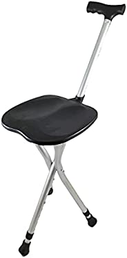 Folding Prayer Chair & Travel + Old Cane - B
