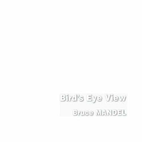 Bird's Eye View (View Birds Eye)