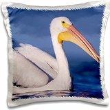 birds-american-white-pelican-bird-rockport-texas-16x16-inch-pillow-case