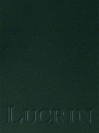Lucrin - Ecritoire - cuir de vachette lisse - Naturel Vert