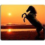 luxlady Gaming Mousepad eine aufbäumendes Pferd am Strand bei Sonnenuntergang photomanipulation Bild-ID 611434