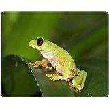 MSD caucho Natural alfombrilla para ratón imagen ID: 4368116Trre de ojos rojos rana Costa...