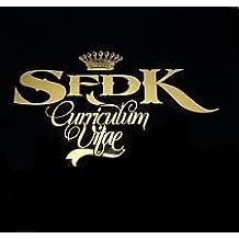 SFDK: Curriculum Vitae