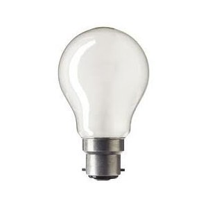 100W PEARL BC GLS LIGHT BULBS Pack of 24