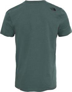 The North Face Herren T-Shirt M Shortsleeve Easy Tee Grün (Thyme)