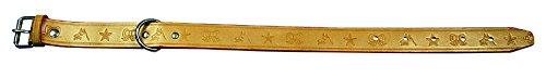 Preisvergleich Produktbild Imex der Fuchs 22101 Halskette Naturleder,  34 x 1, 5 cm