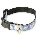Up Country DAI-C-S Daisy Hundehalsband, Schmal 5/8 inch, S