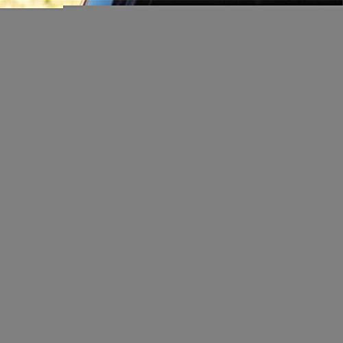 a auto aufkleber Bichon Frise Love Dog Aufkleber Aufkleber Auto LKW Van Wandspiegel Spielzeug Kunst Heckscheibe Auto Aufkleber -