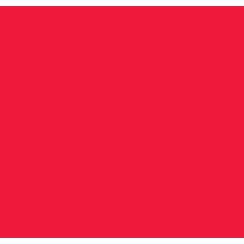 Darice Foamies Foam (Bulk Buy: Darice Foamies Foam Sheet Red 3mm thick 12 x 18 inches (10-Pack) 1184-52 by Darice Bulk Buy)