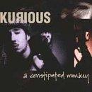 Songtexte von Kurious - A Constipated Monkey